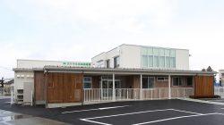 大ケヤキ中央保育園